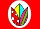 xLex védjegy sztori A Tulipán Csoport